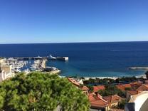 Пентхаус с видом на Монако, порт и стадион Louis II