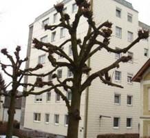 Квартира в Австрии, продажа. №7639. ЭстейтСервис.