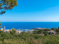 Дом с шикарным видом на море, дворец и порт Монако