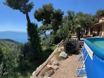 Дом в сосновом лесу в десяти минутах от Монако