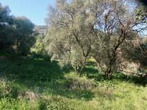 Редкий земельный участок на Roquebrune-Cap-Martin