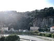 Трёхкомнатная квартира в Ницце, Route de Turin