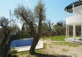 Очаровательная вилла с бассейном в оливковой роще