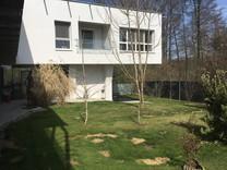 Дизайнерская вилла в пригороде, Hart bei Graz