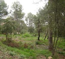 Земельный участок в Испании, продажа. №2661. ЭстейтСервис.