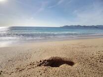 Дом в ста метрах от песчаного пляжа в Каннах