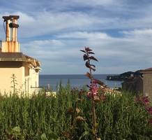 Просторная квартира с двумя спальнями с видом на море в Сен-Жан-Кап-Ферра, продажа. №37678. ЭстейтСервис.