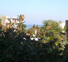 Вместительная квартира с 3 спальнями с видом на море в Антибах, продажа. №11985. ЭстейтСервис.