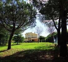 Дом с большим зеленым участком в Калонже, продажа. №38400. ЭстейтСервис.