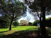 Дом с большим зеленым участком в Калонже