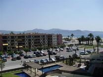 Квартира-студия в Испании