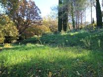 Земля с удобным расположением в секторе Tournamy