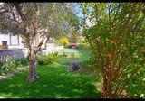 Просторные апартаменты с садиком в Mougins