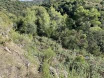 Земельный участок в западной части Ниццы