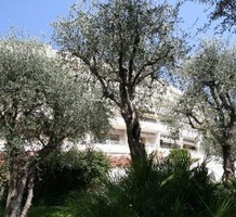 Апартаменты в Ницце, продажа. №16982. ЭстейтСервис.