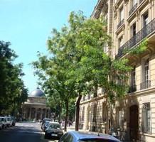 Апартаменты в Париже, продажа. №16374. ЭстейтСервис.