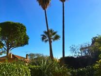 Студия с частным садом в центре Cap Ferrat