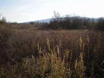 Ровный участок земли в Радановичах