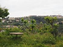 Земельный участок в Ницце, Corniche de Magnan
