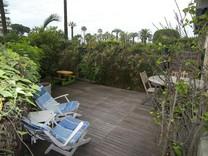 Апартаменты с собственным садом в Каннах