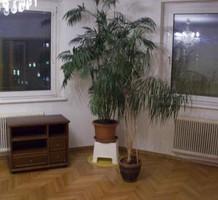 Квартира в Вене, продажа. №15967. ЭстейтСервис.