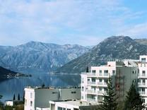 Просторные апартаменты с красивым видом в Доброте