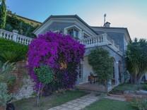 Солидное имение с виноградником в Ментоне