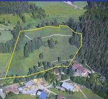 Земельный участок в Австрии, продажа. №6926. ЭстейтСервис.