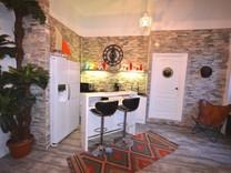 Квартира с одной спальней в стиле лофт в Ницце