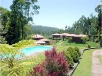 Отель на о.Мадейра