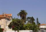 Солнечные апартаменты в Villefranche sur mer
