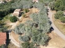 Большой земельный участок в Contes