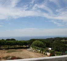 Имение с виноградником и видом на море в Эль Пунто, продажа. №40906. ЭстейтСервис.